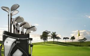Quantos tacos de golfe posso carregar em minha bolsa?